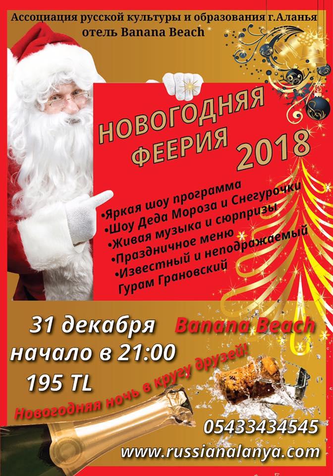 Грандиозное праздничное шоу «Новогодняя феерия 2018»!